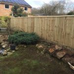 completed garden fence