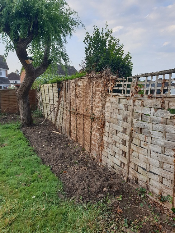 Fence in need of repair 1